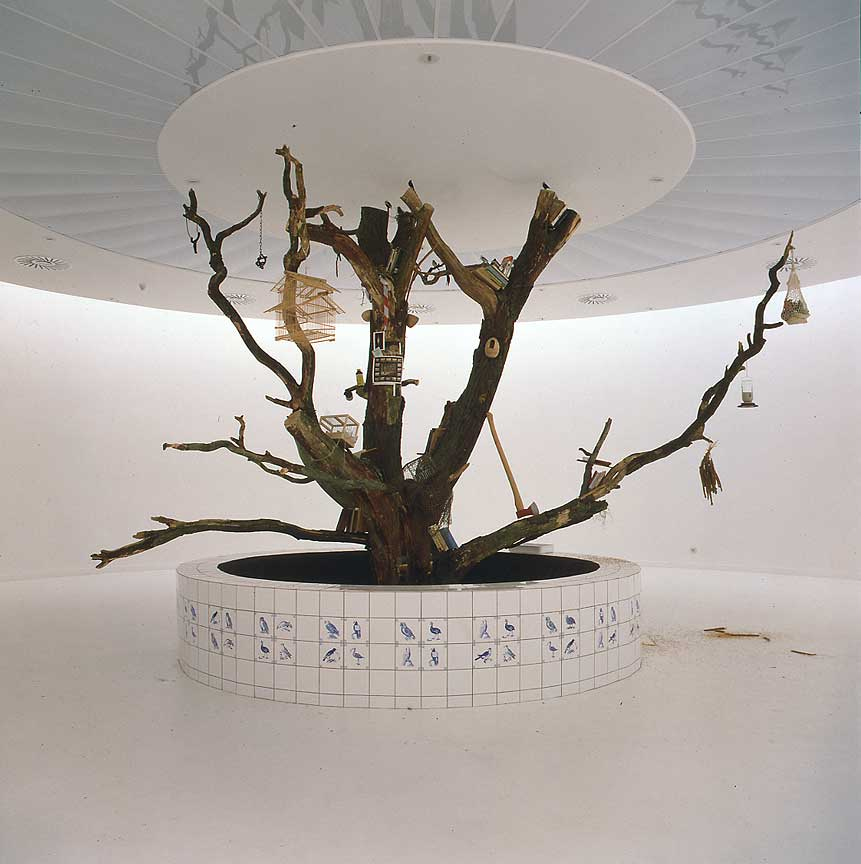 Contemporary Mark Dion Tree Discusses His Relation To Performance Authority Aesthetics And Humor In Ideas